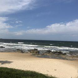 Sunshine coast Oct 2018