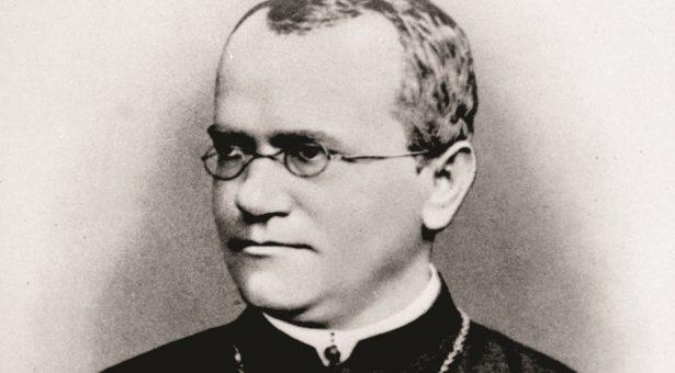 Gregor Mendel: the 'father of genetics' | John Innes Centre