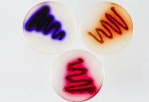 Hybrid antibiotic Streptomyces plate