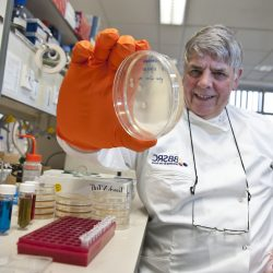 Prof George Lomonossoff
