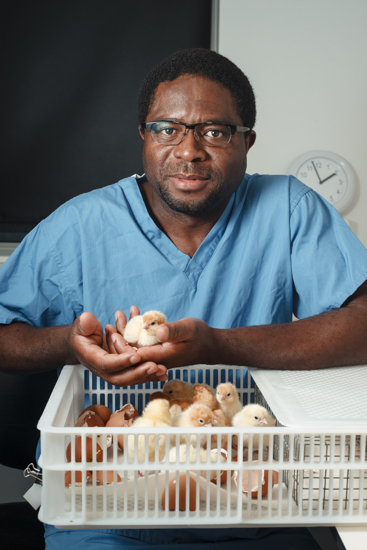Professor Appolinaire Djikeng