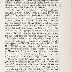Tschermak page 31