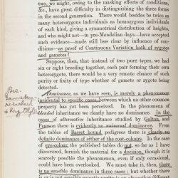 Tschermak page 32