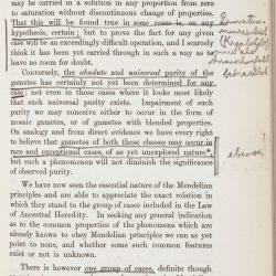 Tschermak page 33