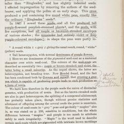 Tschermak page 161