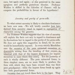 Tschermak page 193