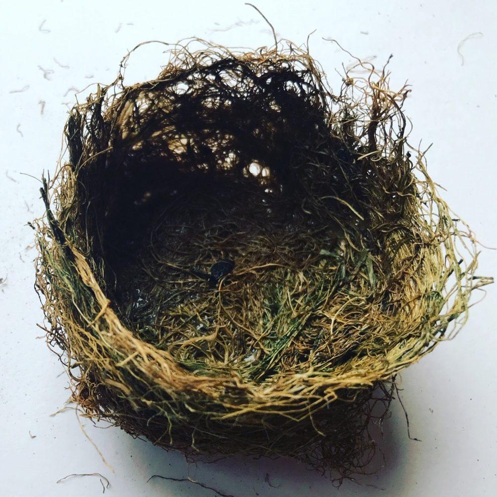 Grasspea bowl