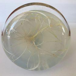 Grasspea fibres
