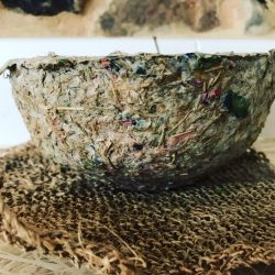Bowl made from grasspea