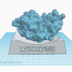 Lysozyme Cad Mockup